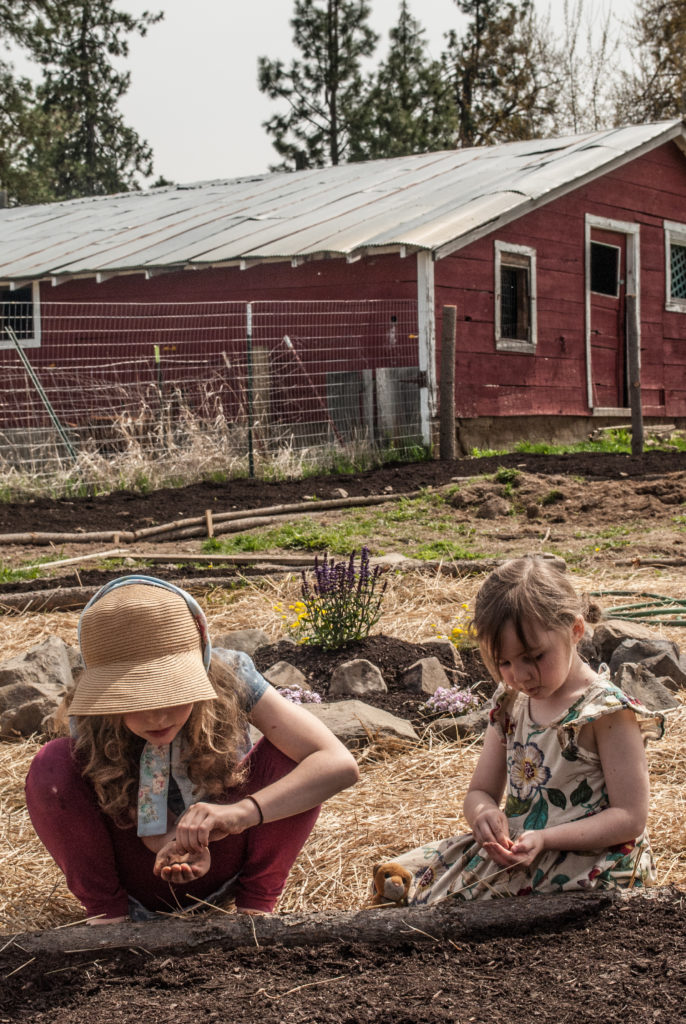 Kids and farm chores on the homestead.  Children are learning to work by watching our example, let's show them how to work well!