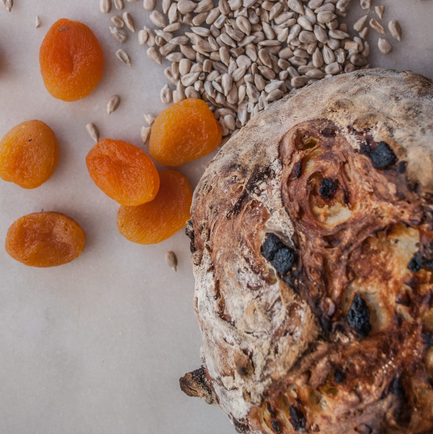 Easy Artisan Bread Recipe that anyone can make! Filled with apricot and sunflower kernels, or the fruit and nuts of your choice. Simple ingredients and easy to follow tutorial. Perfect for Holiday baking or Thanksgiving!
