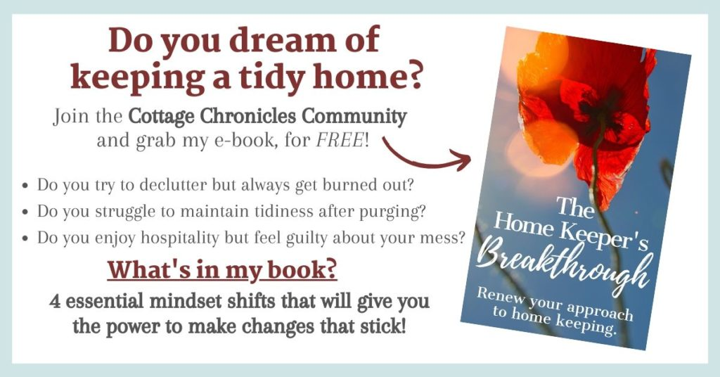 FREE ebook! Do you dream of keeping a tidy home? Inspiration for Decluttering, Minimalism, Simple Living, Downsizing, and Homemaking and Housekeeping.
