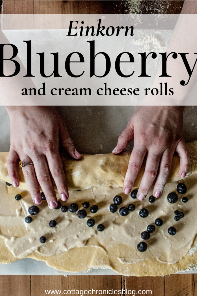 Easy recipe for delicious, buttery sweet blueberry rolls with a cream cheese filling.  Make with delicious Einkorn flour! Perfect for breakfast or brunch.